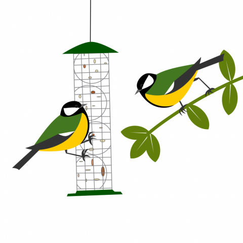 two great tits in a stand off over whose turn it is on the feeder. Simply drawn with flat bold colours on a white background