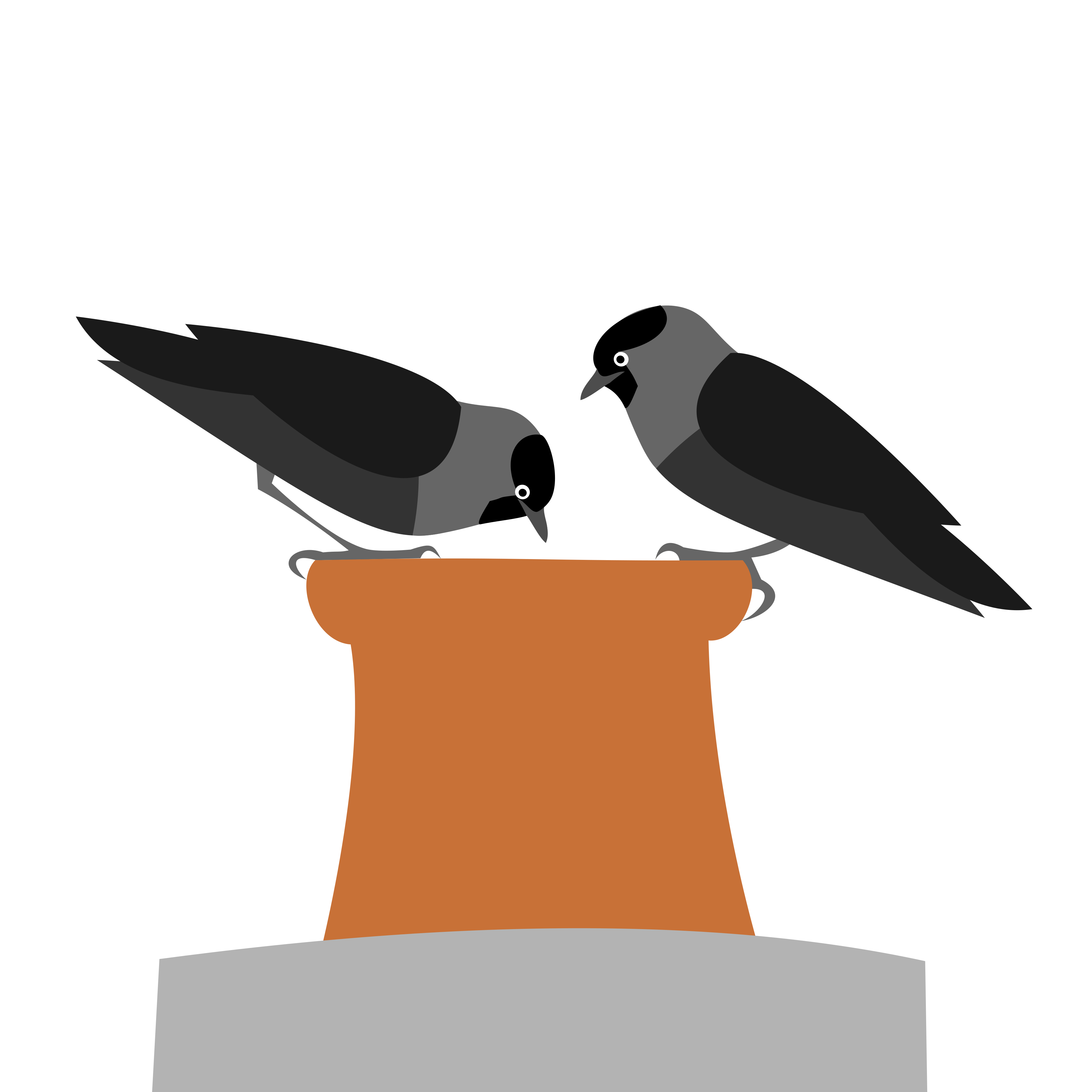 two jackdaws looking down a chimney. Simply drawn with flat bold colours on a white background