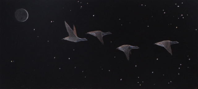 geese flying high at night. there are stars and the moon is dark with a faint crescent of light