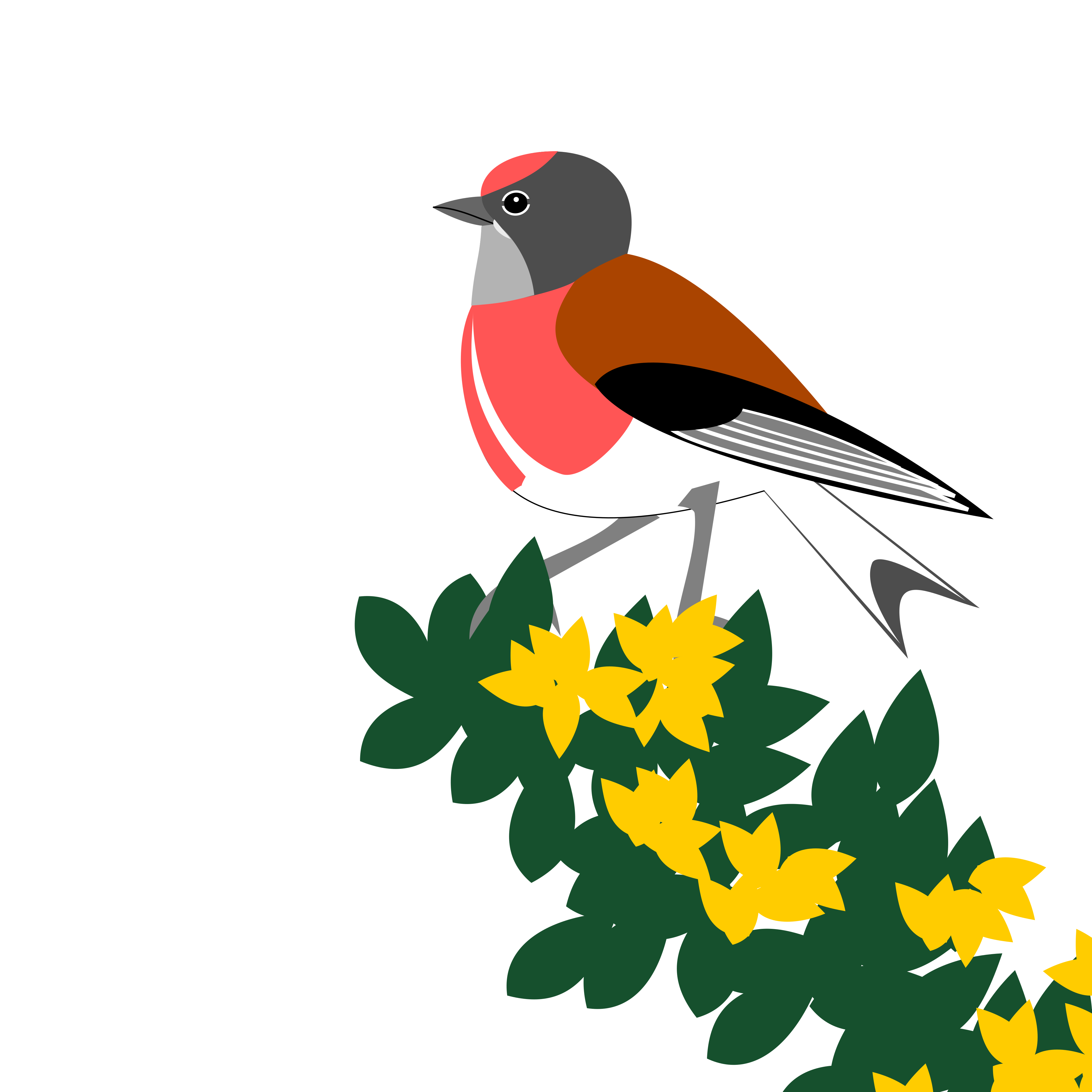 a linnet perched on top of a gorse bush. Simply drawn with flat bold colours on a white background