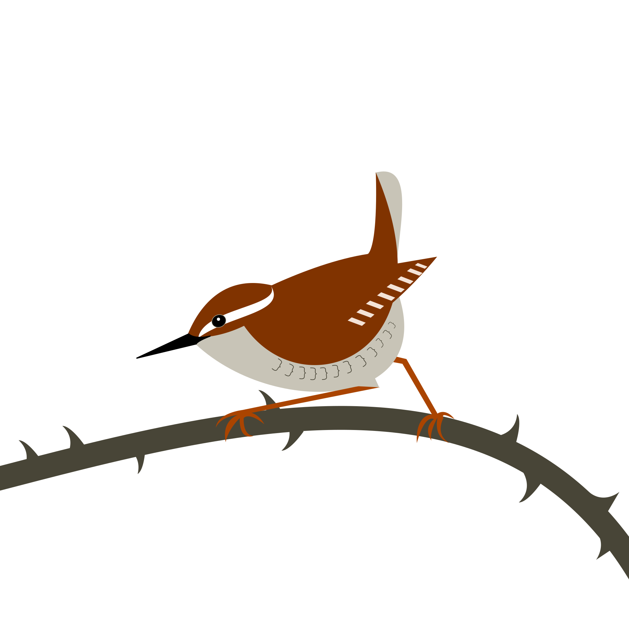 a wren perching on a grey thorny branch. Simply drawn with flat bold colours on a white background