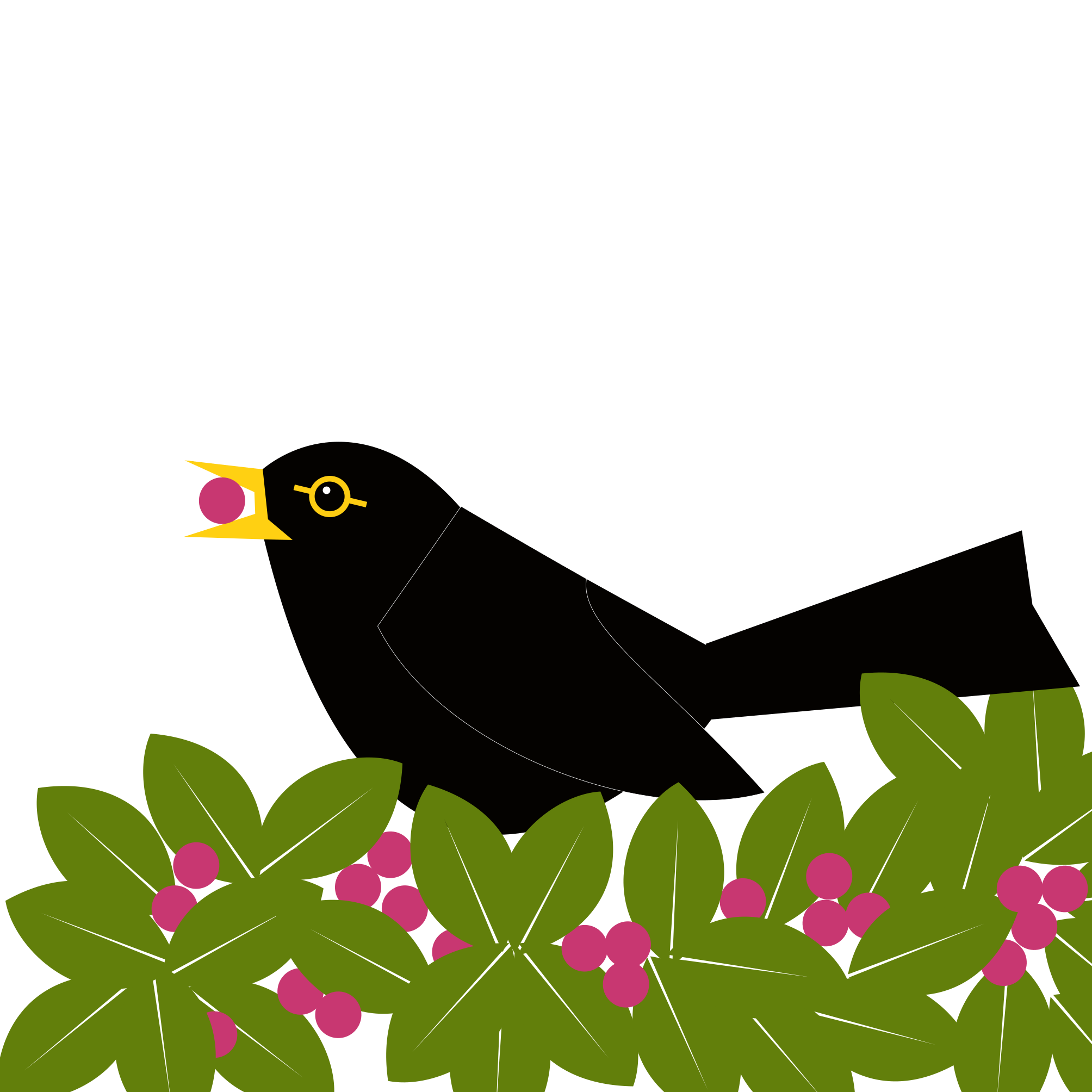 blackbird on top of a bush eating a berry. Simply drawn with flat bold colours on a white background