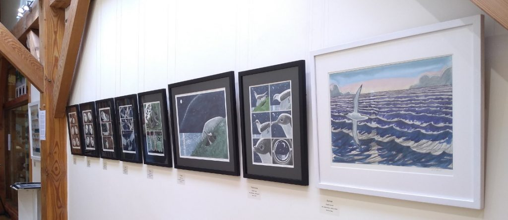 Wild Moments Exhibition